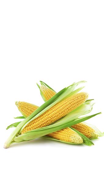 Es bueno comer maíz por la noche